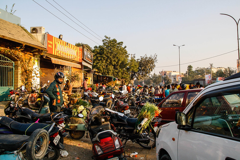 Mehrauli Flower Market_MG_2583November 19, 2012