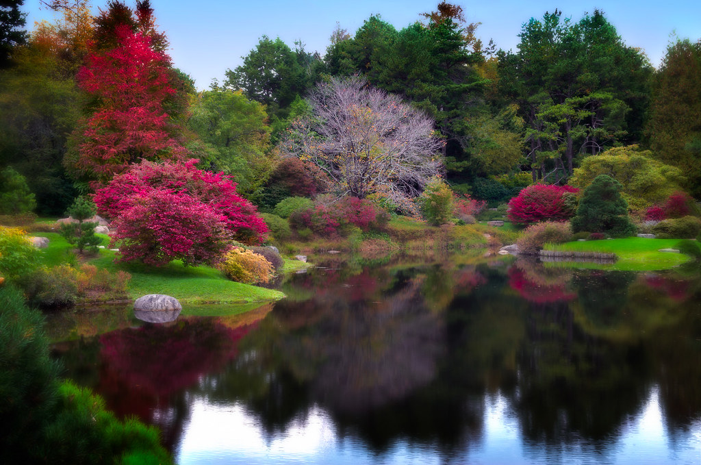 The Asticou Azalea Gardens, Seal Harbor, Maine