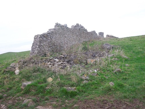 Hill Fort remains?