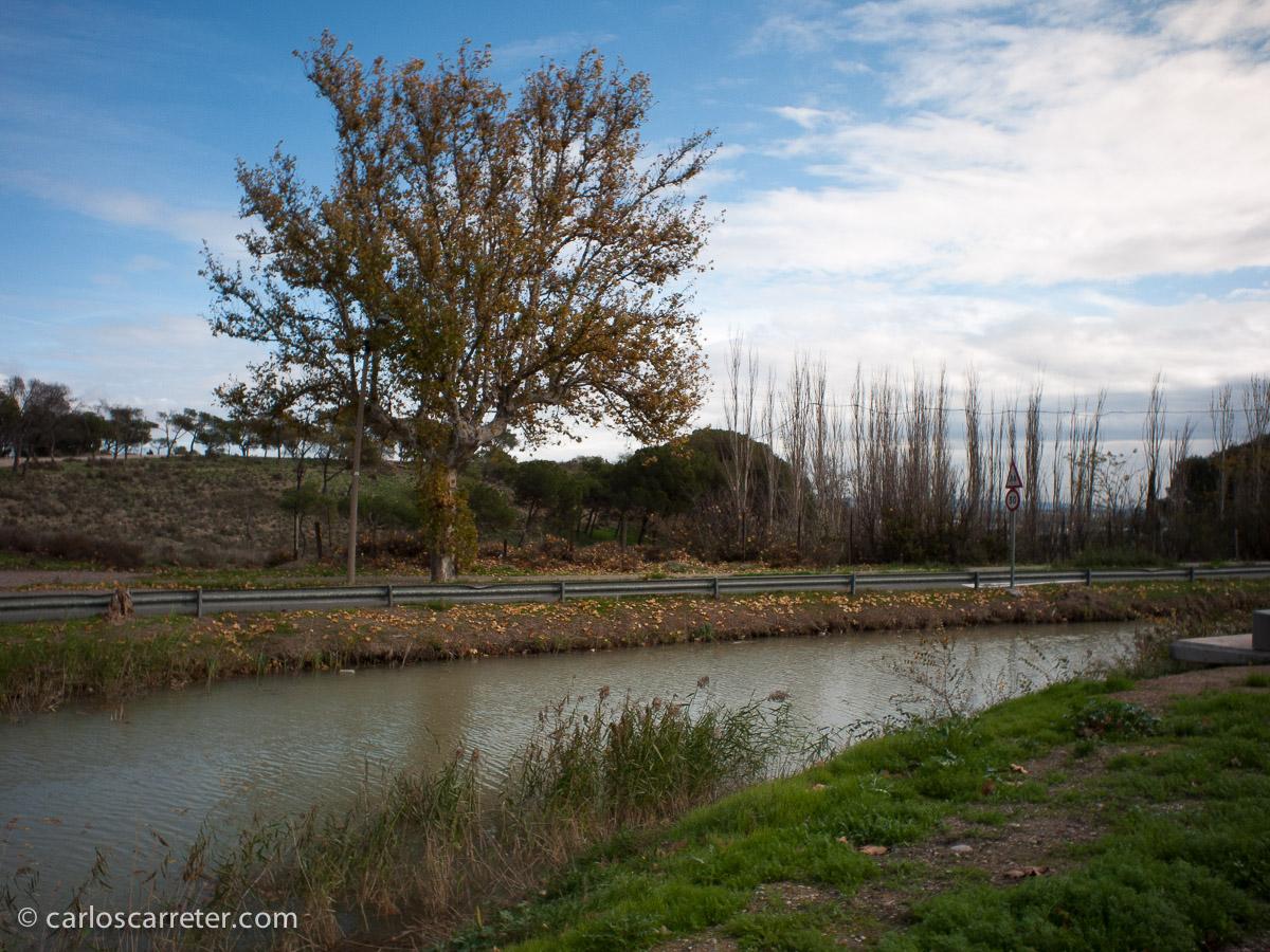 Canal Imperial de Aragón