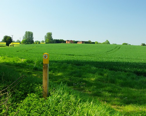 20120527-C_Right of Way But No Path Through Crops by gary.hadden