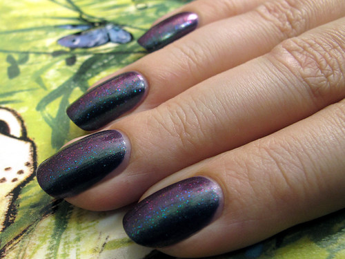 Color Club Port-Folio & Ozotic Elytra 528