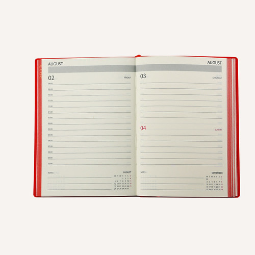 Daycraft Signature 2013 Diary Interior Pages