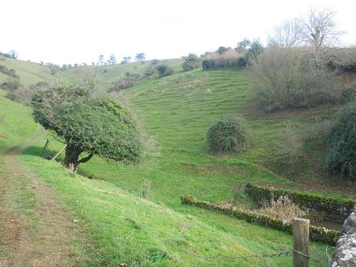 Batcombe Hollow