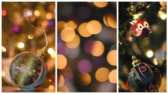 holiday decorations photography