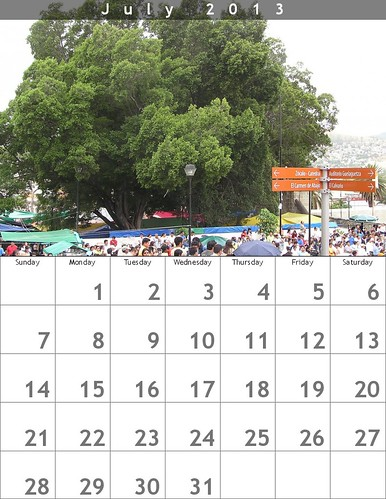 July 2013 Calendar (Oaxaca Trees)