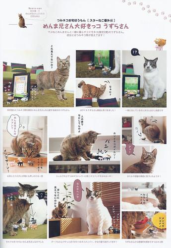 tsumineko+realcats