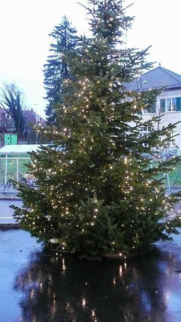 Christmas Tree, Migros Langendorf