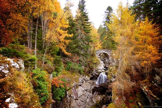 The Bridge over the lower Falls of Bruar