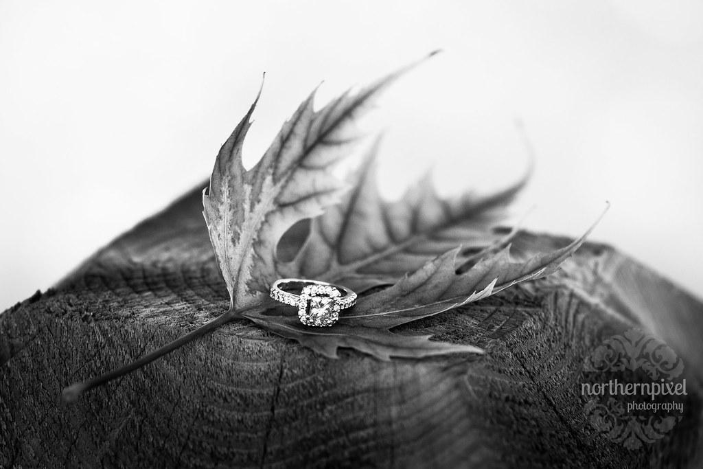 Fall Engagement Ring Maple Leaf Cottonwood Island Park