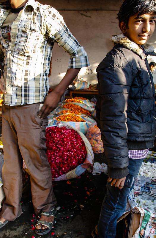 Mehrauli Flower Market_MG_2603November 19, 2012