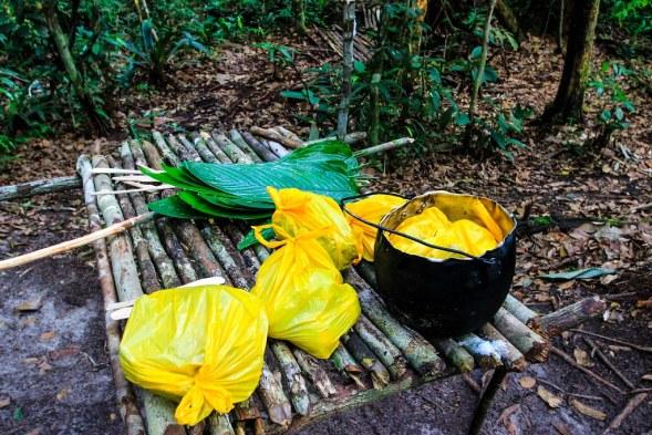 Dinner - Amazon, Brazil