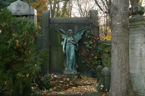 The graveyard angel..