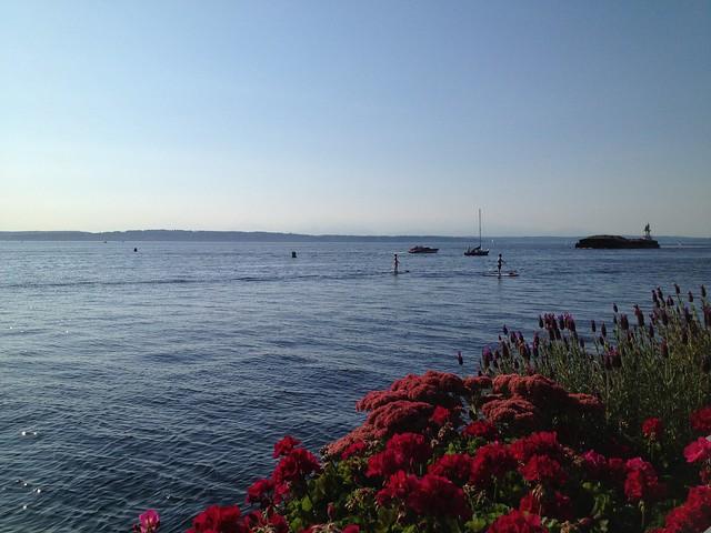 Shilshole Bay