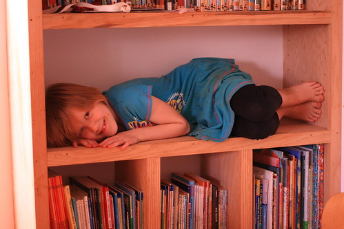Prairie on bookshelf closeup