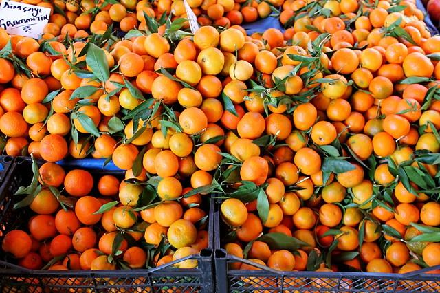 portakallar