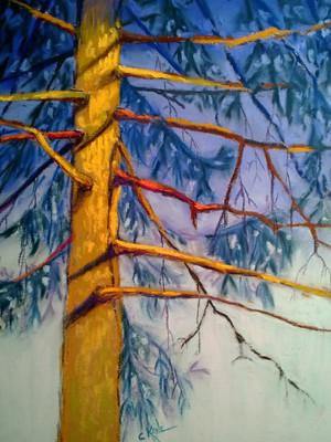 20121231_step8_pine