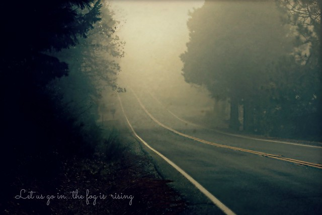 Foggy Days....