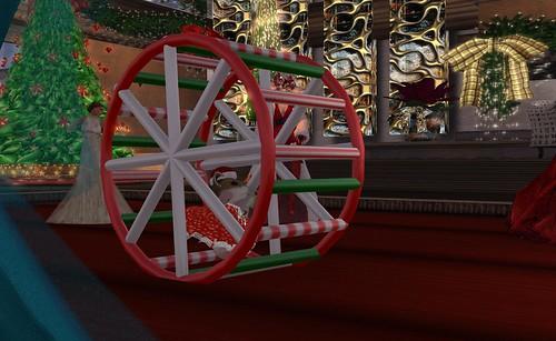Honour's Hamster Wheel - Photograph by Beq Janus