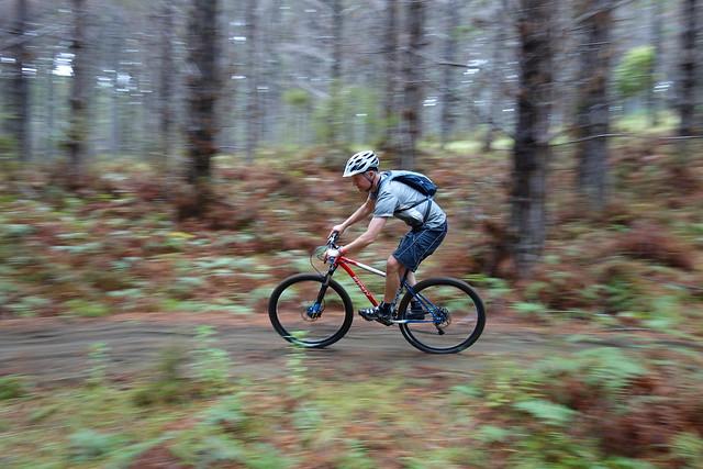 Muz @ Woodhill Forest