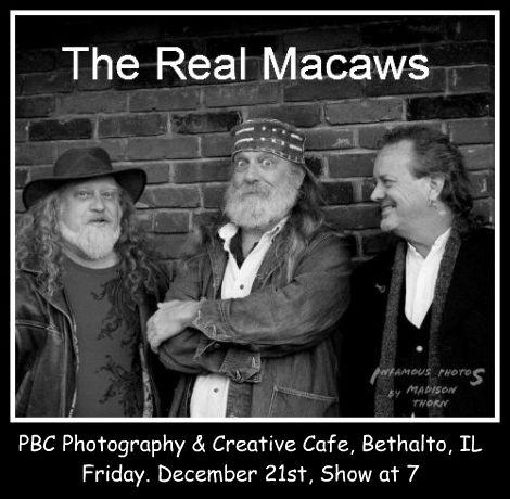 Real Macaws 12-21-12