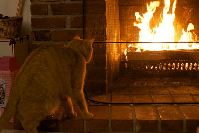 Stretching by the Fire