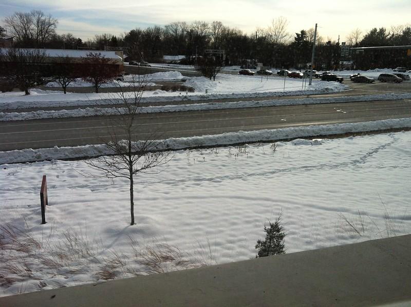 My snow view