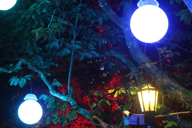 Lamps in the trees