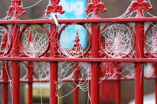 Frozen Webs