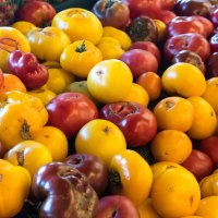 0901 - fruit