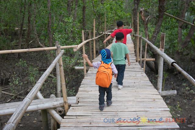 Bakhawan Eco-Park-10.jpg