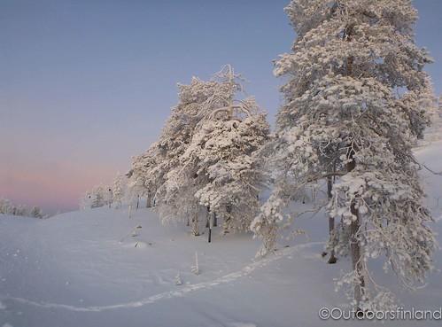 Lapland in December