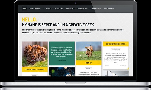 Streak - Responsive WordPress Theme - Macbook
