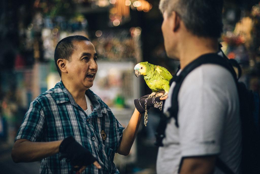 Yuen Po Street Bird Garden-15