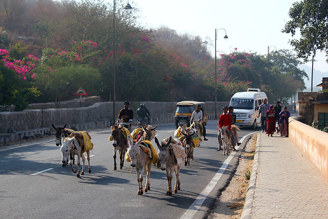 On the way to Amer Fort