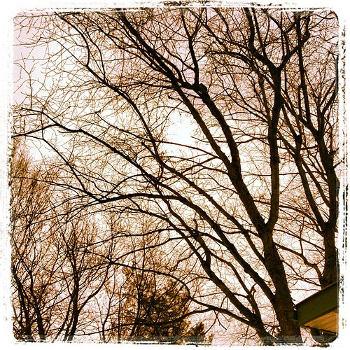 Feb 24 - clouds {lots of them} #fmsphotoaday #clouds