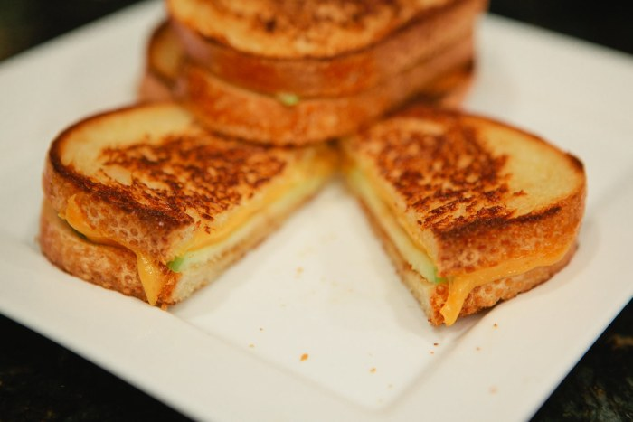 Gourmet grilled cheese sandwhich-10