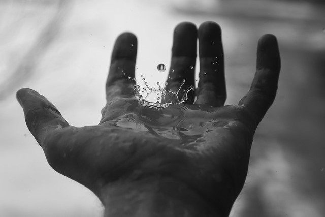Catching Drops - 54/365