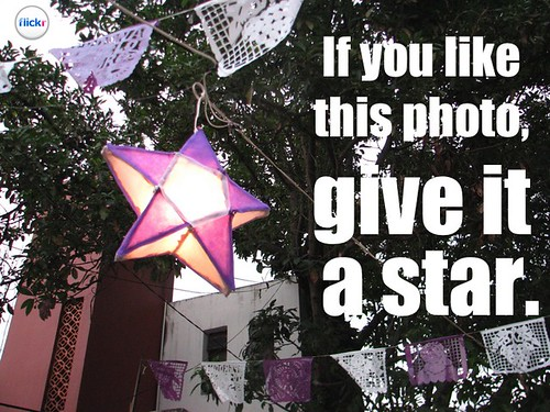 Flickr Lessons: If you like this photo, give it a star #socialweb