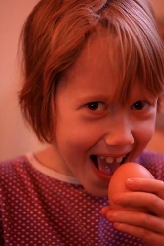 Prairie eat egg
