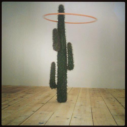 move it! #donotopen #brussels #robertbarta #installation #projectspace #vitrine #art