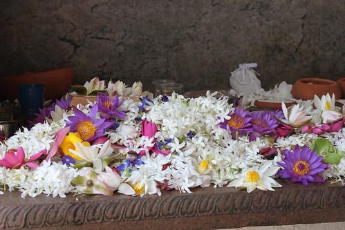 IMG_7014-floral-offerings