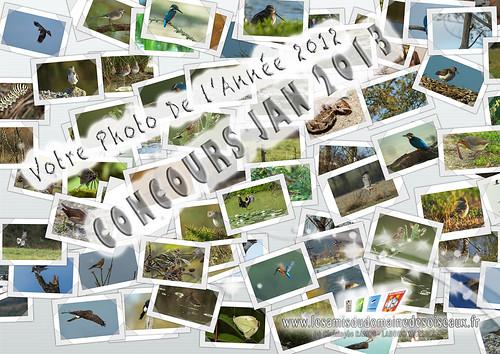 Concours photo - Jan 2013 (Domaine Des Oiseaux, Ariège) by  Christophe-RAMOS