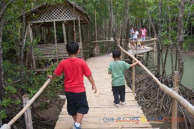 Bakhawan Eco-Park-26.jpg