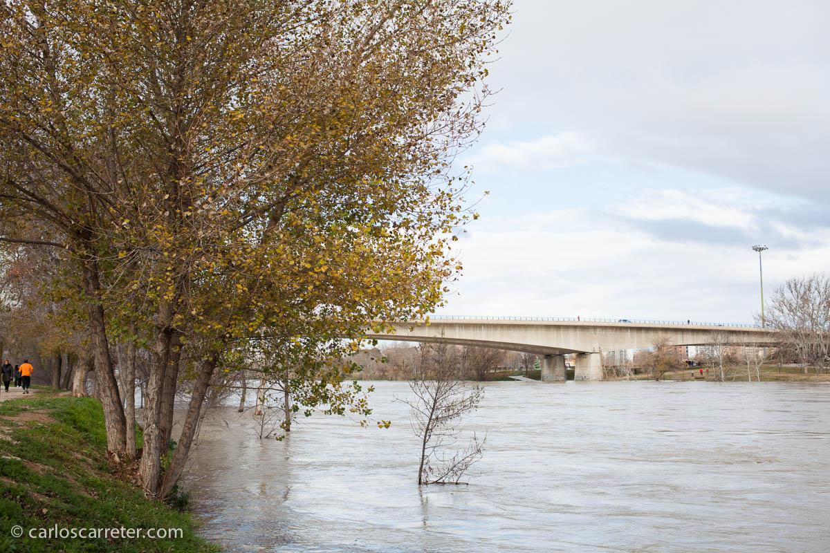 Avenida del Ebro - Puente del Tercer Cinturón