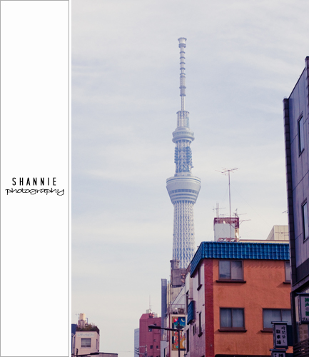 Tokyo Sights - Sensoji 金龍山浅草寺