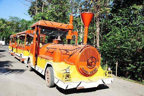 Orange Tram.