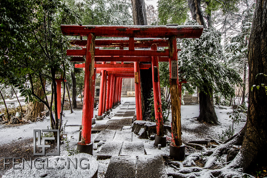 First Snow of the Year in Saitama 1/14/13 | Japan Trip 2013