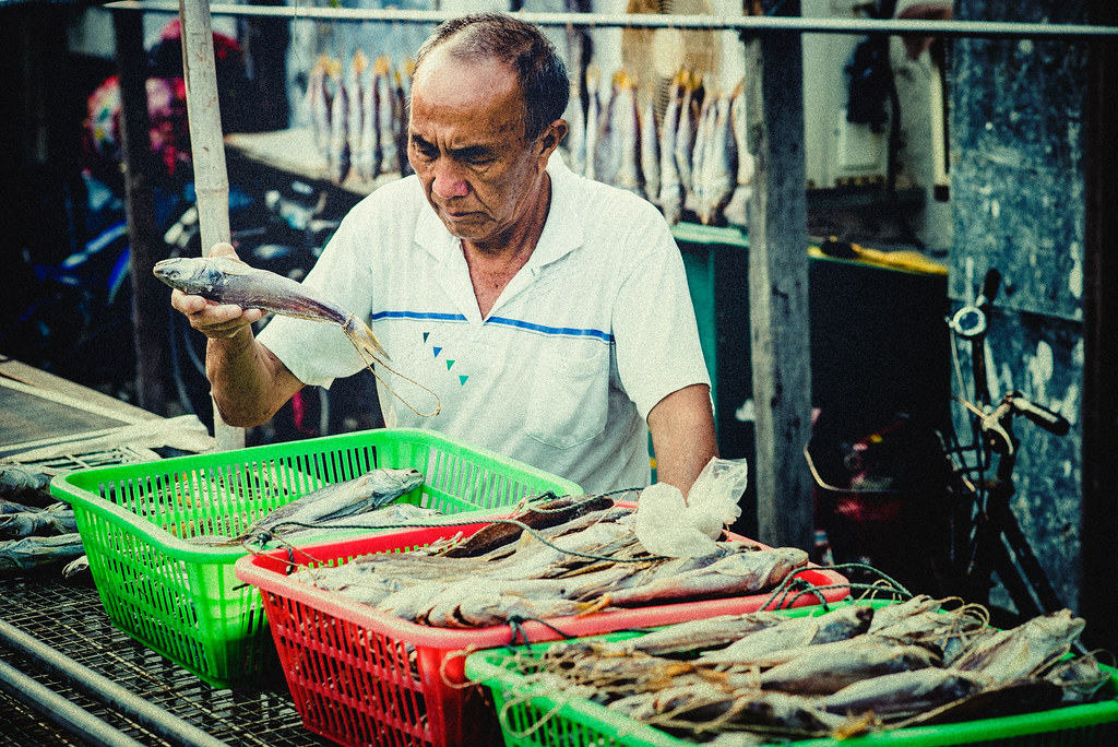 Sorting the Fishes