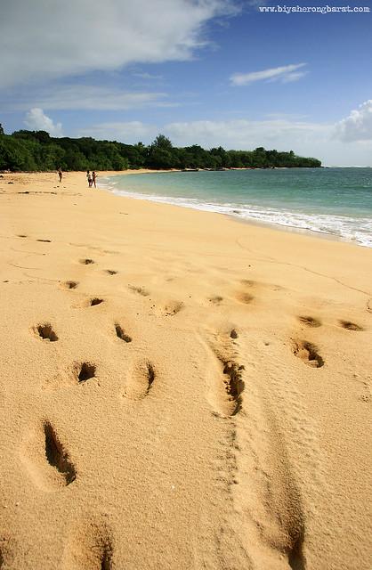 Quinamanucan Island